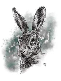 Thorns_Hare